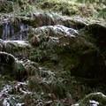 Frozen waterfall en route to Little Si.- Little Si