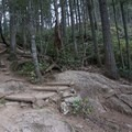 Rocky trail near the beginning of the route.- Little Si