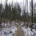 Open trail to Little Si.- Little Si