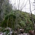 A smaller moss-covered boulder.- Boulder Gardens Loop