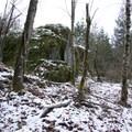 Moss and snow-covered boulder.- Boulder Gardens Loop