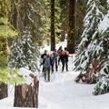 Snowshoeing the Dewey Point Trail.- Dewey Point Snowshoe