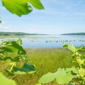 Looking up the Hudson River.- Saugerties Lighthouse