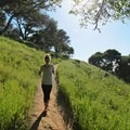 There is a good chance you'll have this trail to yourself.- Mount Livermore