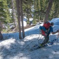 Navigating gets tricky below tree line.- Broken Top Traverse