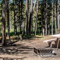 Typical campsite.- Paulina Lake Campground