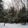 Trailhead for Seymour Mountain.- Seymour Mountain