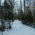 Ward Brook Trail.- Seymour Mountain
