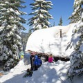 Westview Shelter in the Willamette National Forest.- Westview Shelter