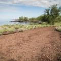 Walking the Ala Kahakai Trail to Mau'umae Beach.- Ala Kahakai National Historic Trail: Spencer Beach to Mau'umae Beach
