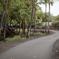 The trail through the fishponds is ADA accessible.- Kalahuipua'a Trail + Fishponds