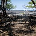 Access to the beach.- Kīholo State Park Reserve