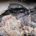 Petroglyphs at Kīholo Bay State Park Reserve.- Kīholo State Park Reserve