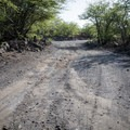 The gravel road is easily passible in most vehicles.- Kīholo State Park Reserve Campground