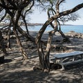 A typical campsite at Kīholo State Park Reserve comes with a picnic table, a fire pit, and incredible views of the bay.- Kīholo State Park Reserve Campground