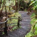 The route begins at the rim of the crater and works its way down, so some sections of trail are reinforced with stairs.- Kīlauea Iki Trail
