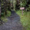 It is possible to hike to the Kīlaeua Iki Trail from the visitor center.- Kīlauea Iki Trail
