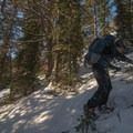 Breaking through the sub-alpine in McCully Basin.- McCully Basin Ski Tour