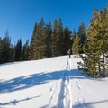 Gentle slopes on the approach to McCully Basin.- McCully Basin Ski Tour