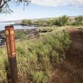 Taking the Ala Kahakai National Historic Trail back to Spencer Beach Park.- Mau'umae Beach