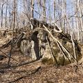Geology of Joppenbergh Mountain.- Joppenbergh Mountain