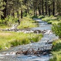 Paulina Creek.- McKay Crossing Campground
