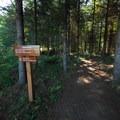 Heartwood Trail at Dairy Creek Camp East, L.L. Stub Stewart State Park.- Dairy Creek Camp East + West