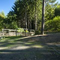 Typical campsite at Hares Canyon Horse Camp, L.L. Stub Stewart State Park.- Hares Canyon Horse Camp