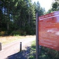 Entrance to the park's 23 hike-in campsites at L.L. Stub Stewart State Park.- L.L. Stub Stewart State Park