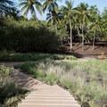 Stairs lead down to the site known as Pelekane, formerly a royal compound.- Pu'ukoholā Heiau National Historic Site