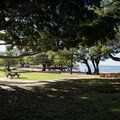 An open grassy area parallels the beach at Spencer Beach Park.- Samuel M. Spencer Beach Park