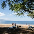Sections of Spencer Beach receive shade in the morning.- Samuel M. Spencer Beach Park