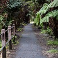 The walk through the Sulphur Banks area is either on a boardwalk or an asphalt path. It is ADA accessible and great for kids and strollers.- Sulphur Banks + Crater Rim Trail Loop