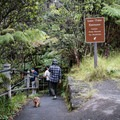 The pathway down to the Thurston Lava Tube entrance. Note that pets are prohibited on this trail.- Thurston Lava Tube