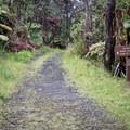 The Thurston Lava Tube is accessible via the Crater Rim Trail and the Kīlaeua Iki Trail.- Thurston Lava Tube