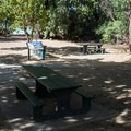 Picnic tables near the beach entrance.- Beach 69 / Waialea Beach