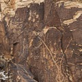 Detail of the petroglyphs in the first main section on the east side of the gap.- Parowan Gap Petroglyphs