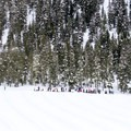 People waiting their turn at the top of the tubing hill.- Hoodoo Autobahn Tubing Park