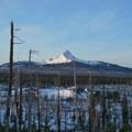 Early light on Mount Washington to the south.- Three Fingered Jack Backcountry Ski: South Ridge