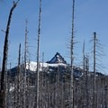 The Three Fingered Jack objective though the burned out forest.- Three Fingered Jack Backcountry Ski: South Ridge