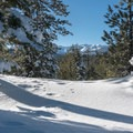 View from a small hill along the snowshoe loop.- Mammoth Scenic Loop Snowshoe