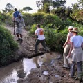 Some safari companies offer the opportunity to get out of the Land Cruisers and explore the Masai Mara on foot.- Masai Mara National Reserve