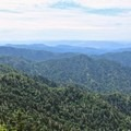 Expansive views looking east from the summit.- Mount LeConte via Alum Cave Trail