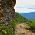 Exposed section of the trail hugging the cliff face.- Mount LeConte via Alum Cave Trail