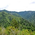 Peregrine falcons are frequently seen at this viewpoint on the trail.- Mount LeConte via Alum Cave Trail