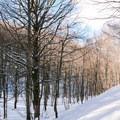 Beautiful views in the Rifugio La Fossa.- Rifugio La Fossa Snowshoe, Monte Terminillo