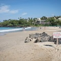 The section of the beach dominated by the resort is offset by a small point.- Hāpuna Beach