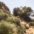 Ascending Burbank Peak.- Hollywood Sign via Lake Hollywood Drive