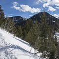 The trail starts off a bit steeper, but it levels out.- Mill D North to Dog Lake Snowshoe