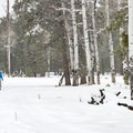 Wrapping up a peaceful ski on a snowy day.- Arizona Nordic Village